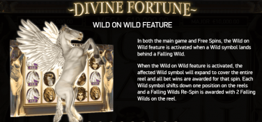 Divine Fortune Wild