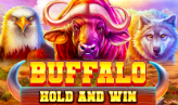 Buffalo Hold and Win
